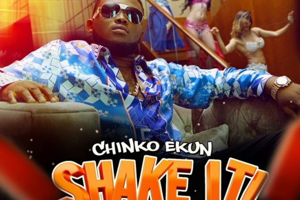 Chinko Ekun – Shake It