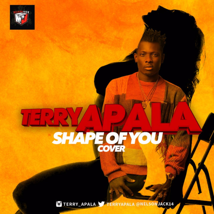 Terry Apala – Shape of You (Ed Sheeran Cover)