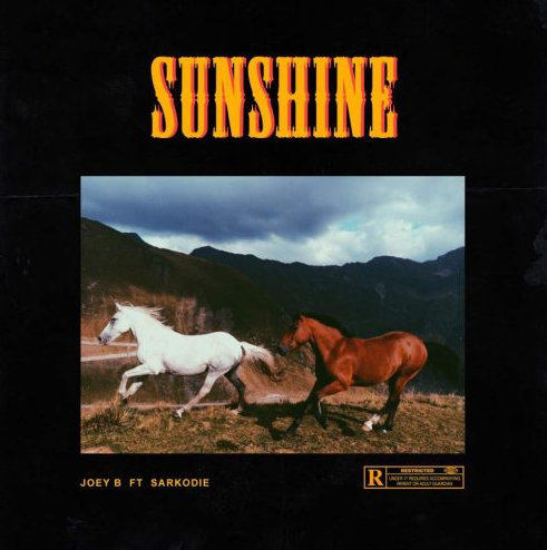 Joey B – Sunshine (Remix) Ft. Sarkodie
