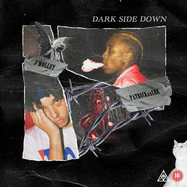 "PatrickxxLEE - ""Dark Side Down"" Ft. J Molley"