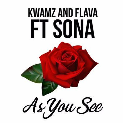Kwamz and Flava ft. Sona – As You See